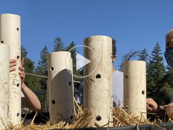 Making Compost Video: Johnson Su Bio Reactor II
